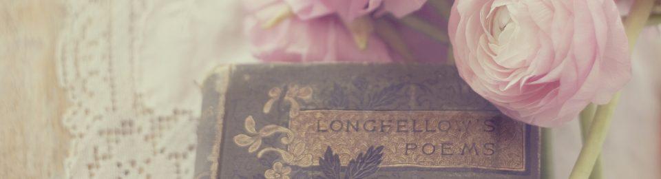Literature and Lingerie
